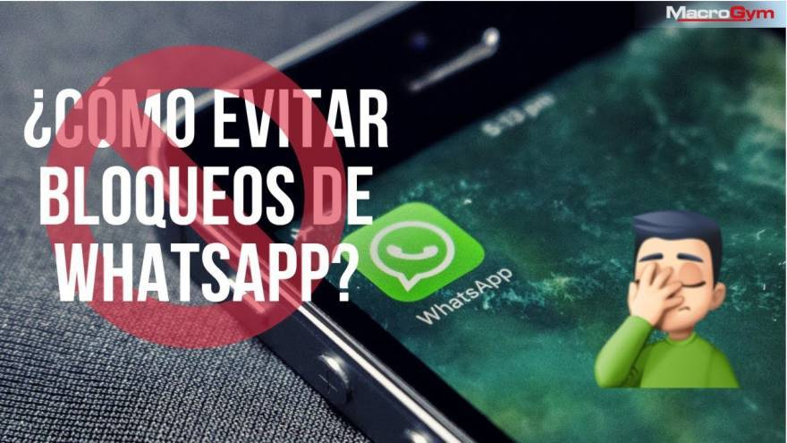 Estrategia comercial entre el software IntelliGym y WhatsApp